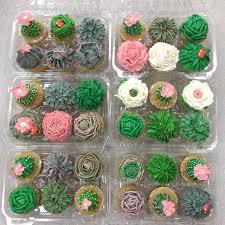 Buttercream Succulent Cupcakes