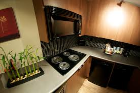 Fancy Small Zen Kitchen With Natural Wood Color Cabinet Modern Black Appliances