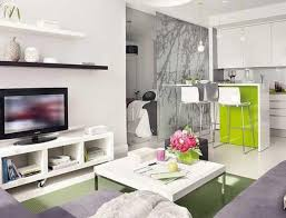 KitchenComely Small Apartment With Open Kitchenette Across Modern Living Room Comely