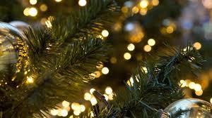 Christmas Tree Shop Downingtown Pa by Hankin Group Linkedin