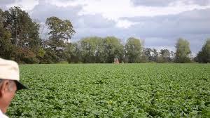 Pumpkin Picking Nj Colts Neck by Njda Meet Nj Farmers 3 Formisano Farms Youtube