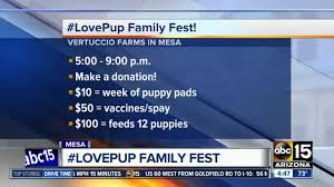 Pumpkin Patch Power Rd Mesa Az by It U0027s All Going To The Dogs Food And Fun At Lovepup Family Fest
