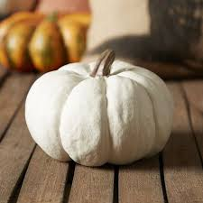 Carvable Foam Pumpkins Canada by 71 Best Holidays Thanksgiving Craft Supplies Images On