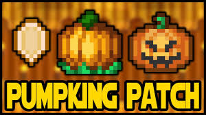 Minecraft Pumpkin Seeds Wont Plant by How To Grow Pumpkings Fast Pumpkin Seeds Pumpkin Patch Terraria