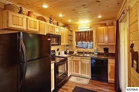 Log Cabin Kitchen Ideas by Log Cabin Interiors Design Ideas Knowledgebase Facelift Modern