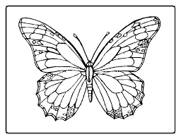 The Adult Butterfly Animal Coloring Pages