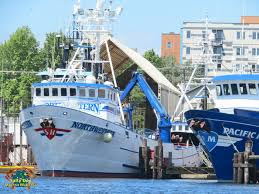 Wizard Deadliest Catch Sinks by Northwestern Crab Boat Sinks Sinks Ideas