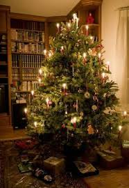Christmas Tree Amazon Local by Victorian Era Christmas Traditions Christmas Traditions