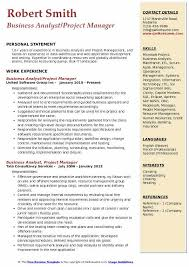 Business Analyst Project Manager Resume Template Download PDF Description
