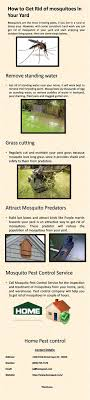 The 25+ Best Malaria Disease Ideas On Pinterest | Symptoms Of ... How To Remove Mosquitoes From Your Backyard Youtube 25 Unique Mosquito Spray Ideas On Pinterest Natural Mosquito Keep Mosquitoes Out Of Your Yard For A Month And Longer With Ways Repel Accidentally Green To Get Rid Of Bugs In Backyard Enjoy Bbq Picture With Gnats In The House Kitchen Plants Organically 9 Steps Pictures Best Sprays Insect Cop 27 Banish From Next Barbecue Roaches Fleas Ants Repelling Plants Plant Citronella Lemongrass