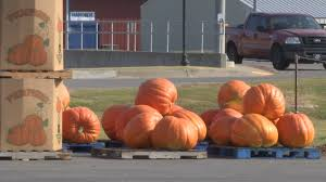 Carmichaels Pumpkin Patch Oklahoma by 100 Carmichael Pumpkin Patch Triple B Farms Country Market