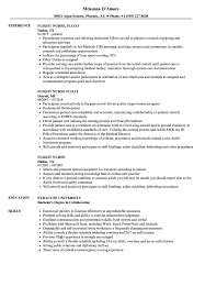 Download Flight Nurse Resume Sample As Image File