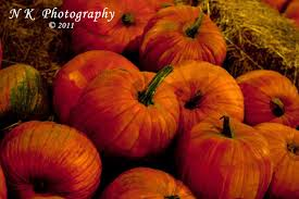 Gizmo Pumpkin Pattern Free by Kissack Adventures October 2013