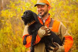 Chesapeake Bay Retriever Shed Hunting by Best Hunting Dogs Gun Dogs Hunting Dog Breeds Field U0026 Stream