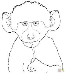 Coloring Pages Baby Looney Tunes Click Cute Baboon Shower Online