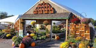 Pumpkin Patch Near Birmingham Alabama by Farm Market Farm Kitchen Garden Center U0026 Corn Maze Moulton