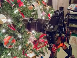 Christmas Trees And Cameras Have Something In Common