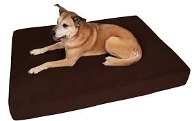 Big Lots Pet Furniture Covers by Top 6 Best Orthopedic Dog Bed Reviews For 2017