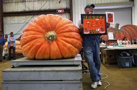 Nh Pumpkin Festival Riot by Topsfield Fair Pumpkins Fall Short Of Record Size The Boston Globe
