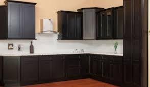 Grk 10 Cabinet Screws by Dramatic Figure Cabinet Types Remarkable Cabinet Screws Grk