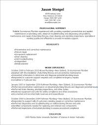 Professional Journeymen Plumber Resume Templates To Showcase Your Talent