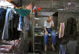 Retired Manual Labourer 79 Year Old Tai Lun Po Has Lived In His Cage Home For 30 Years The Inhabitants Are Stacked On Top Of Each Other Damp