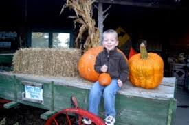 Southern Ohio Pumpkin Patches by Pumpkin Patches Hayrides And Corn Mazes Oh My Macaroni Kid