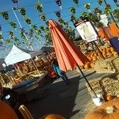 Pumpkin Patches In Bakersfield Ca by The Fruit Barn 32 Photos U0026 36 Reviews Bakeries 4342 Geer Rd