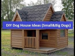 Photo Of Cheap Houses Ideas by Cheap Diy House Ideas For Small And Big Dogs
