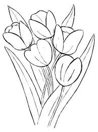 Coloring Pages Of Flowers Tulips Pictures