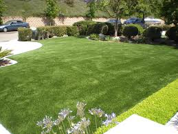 ProLawn Turf | Artificial Grass In Palm Springs By Pro Lawn Turf Backyard Putting Green Artificial Turf Kits Diy Cost Lawrahetcom Austin Grass Synthetic Texas Custom Best 25 Grass For Dogs Ideas On Pinterest Fake Designs Size Low Maintenance With Artificial Welcome To My Garden Why Its Gaing Popularity Of Seattle Bellevue Lawn Installation Springville Virginia Archives Arizona Living Landscape Design Images On Turf Irvine We Are Dicated