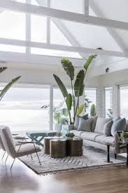 potted bliss indoor plants 101 coastal living rooms