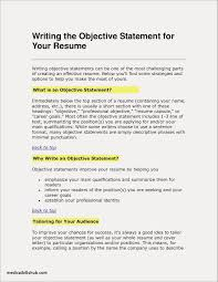 29 New Resume Objective Example