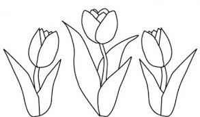 Coloring Page Tulip Nature 123