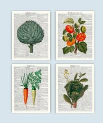 Kitchen Prints Wall Art Decor Vegetable Print Vintage Cooking Gifts SKUV3
