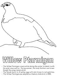 Willow Ptarmigan Coloring Page