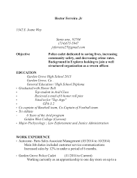Resume Objective For Law Enforcement Example Police