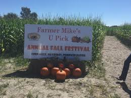 Pumpkin Patch And Corn Maze Milton Fl by 10 Best Pumpkin Patches In Florida