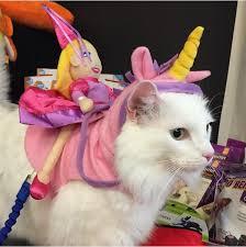 costume for cat 30 pet cat costumes 2017 ideas for cat costumes