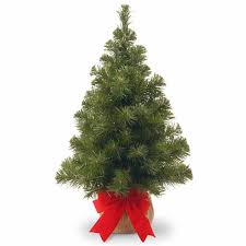 National Tree Co 2 Foot Noble Spruce Christmas