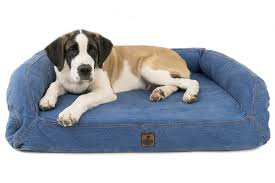 Top Rated Orthopedic Dog Beds by Orthopedic Bolstered Denim Bed Xl Dog Beds