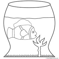 Clown Fish In Bowl