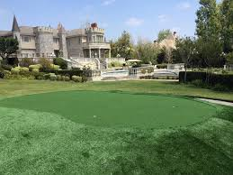 Grass Turf Friendswood Texas fice Putting Green Front Yard