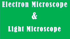 Difference between Electron Microscope and Light Microscope