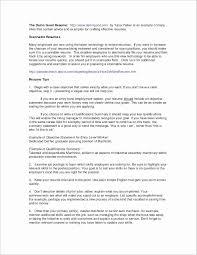 Emba Resume Samples Professional Template Designs
