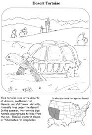 Click To See Printable Version Of Desert Tortoise Coloring Page