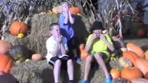 Marana Pumpkin Patch 2015 by Maze Dayz Fall Festival Maze And Pumpkin Patch Youtube