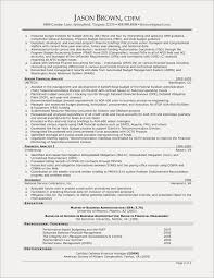 Technical Resume Examples Fresh Pdf Beautiful Best 0d