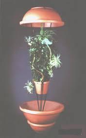 Basking Lamp For Chameleon by 69 Best Chameleon Resources Images On Pinterest Chameleons