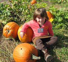 Pierce College Pumpkin Patch 2017 by Write From The Heart October 2011